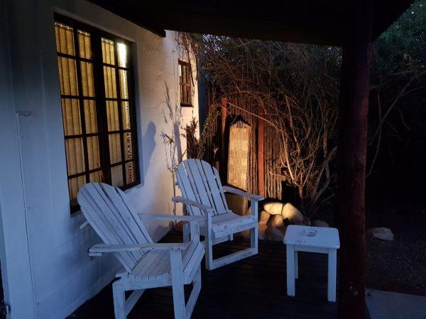 Zebra deck chairs